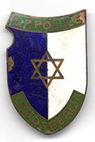 Bolek's Police badge